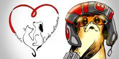 """Le Legioni di Star Wars per """"Code nel cuore"""""""